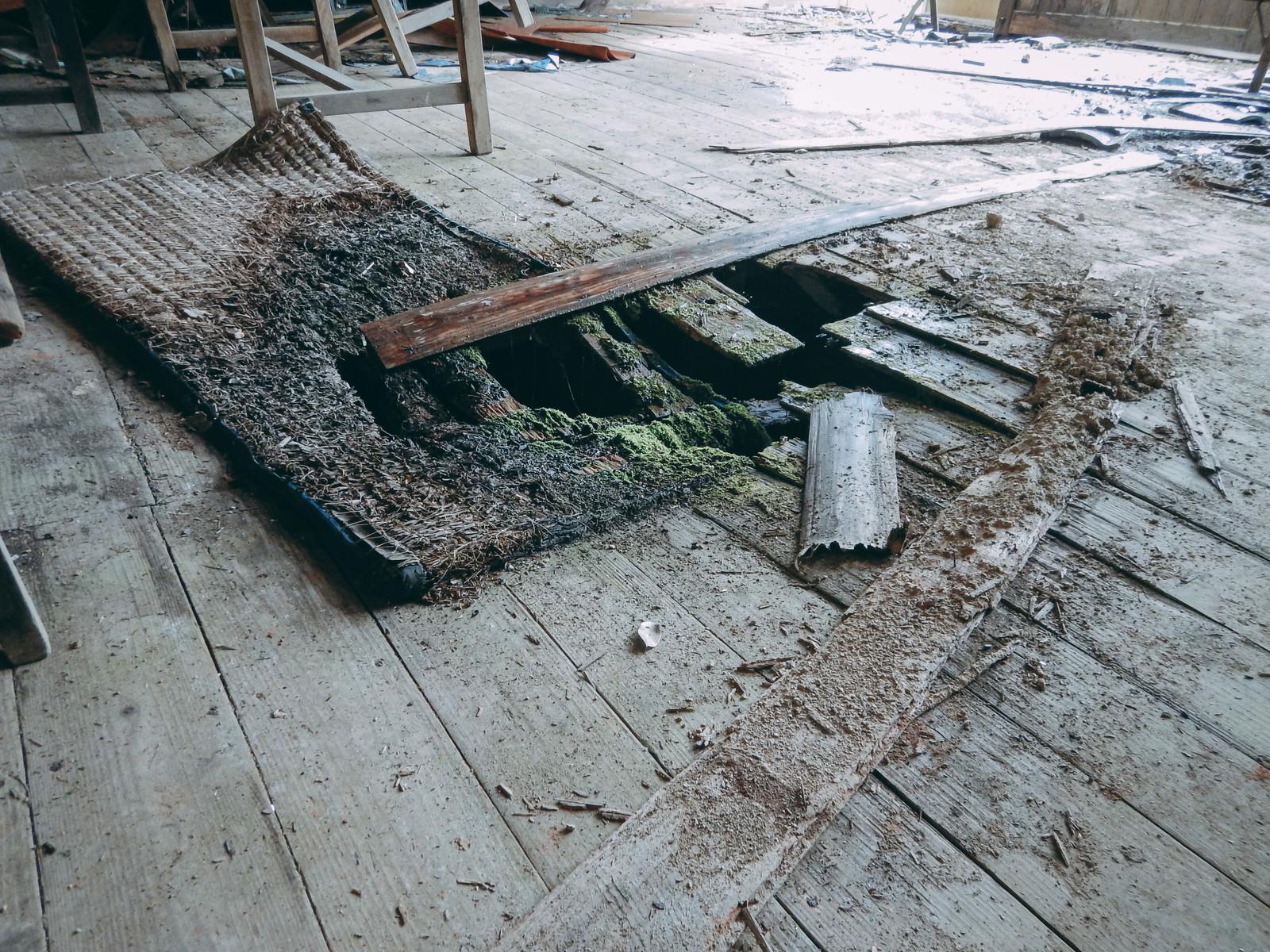 「廃教室の床に穴が空いた」の写真