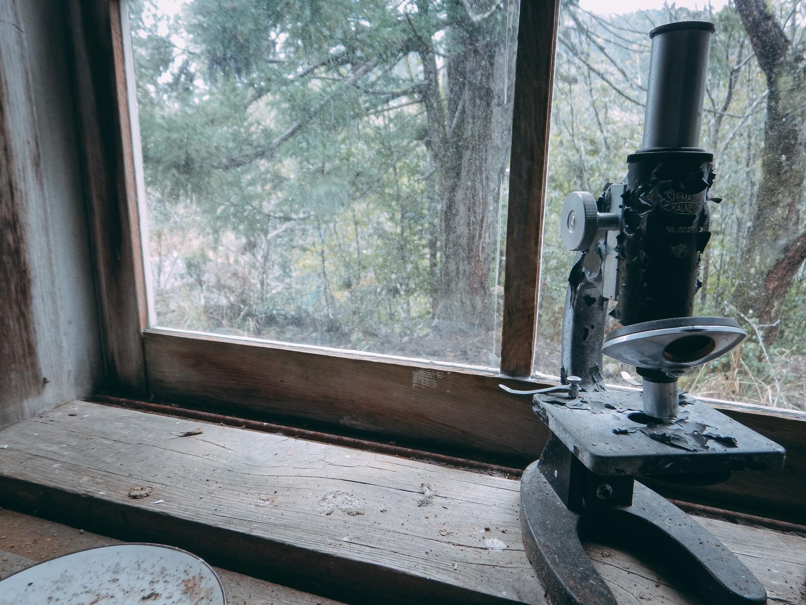 「日当たりがいい理科室跡と顕微鏡」の写真
