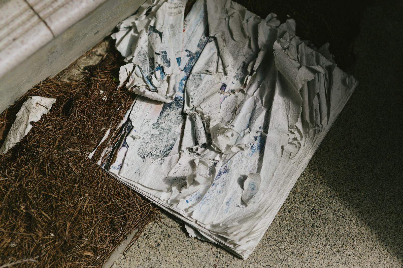 「数年間雨ざらしで投棄された雑誌」の写真