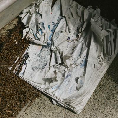 「数年間雨ざらしで投棄された雑誌」の写真素材