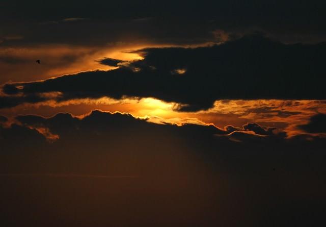 家路の夕焼け空の写真