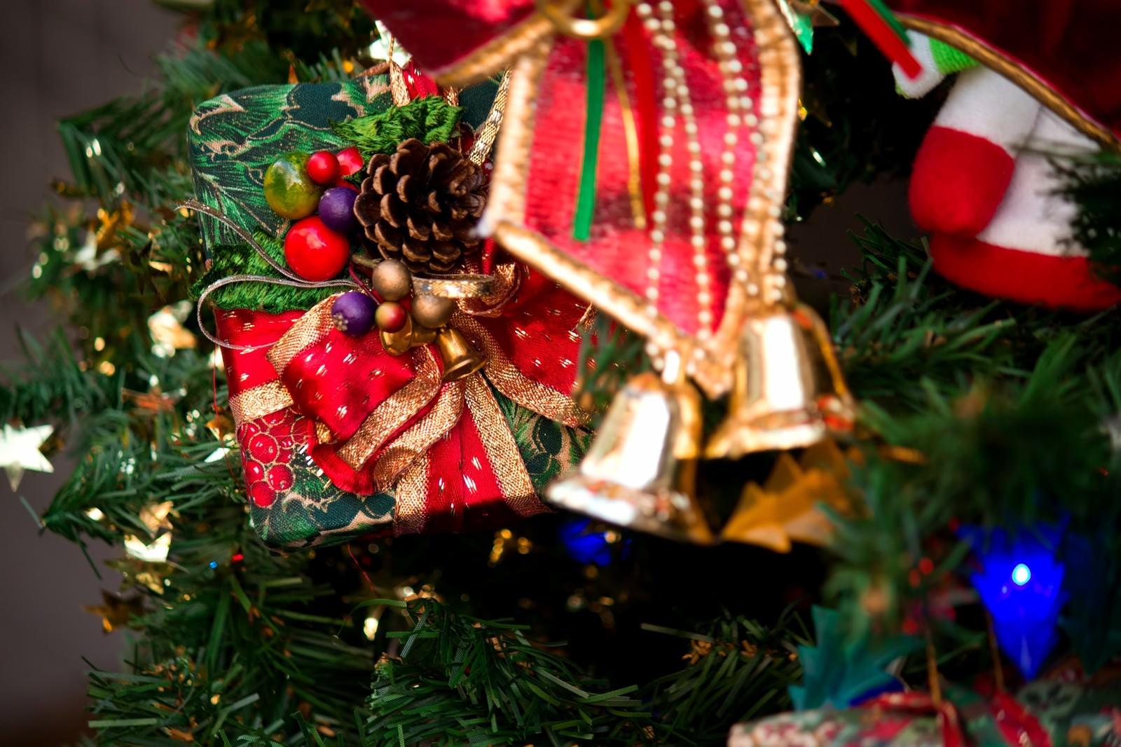 「クリスマスのプレゼントとツリー」の写真