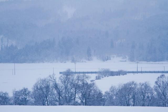 雪の積もる田舎の写真