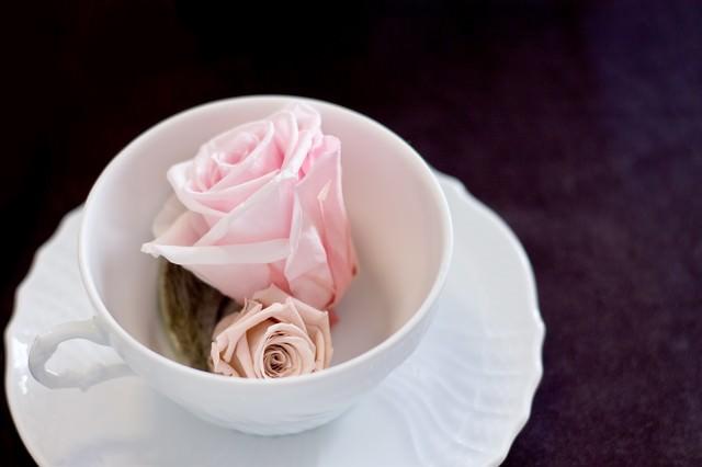 カップに入った薔薇の花の写真