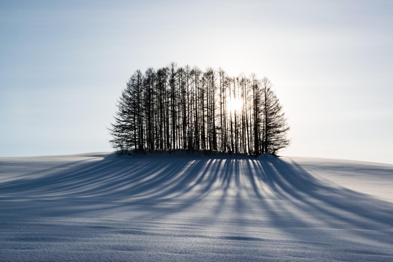 「雪とマイルドセブンの丘雪とマイルドセブンの丘」のフリー写真素材を拡大