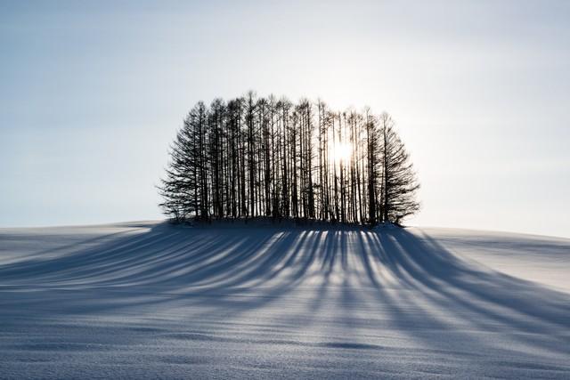 「雪とマイルドセブンの丘」のフリー写真素材