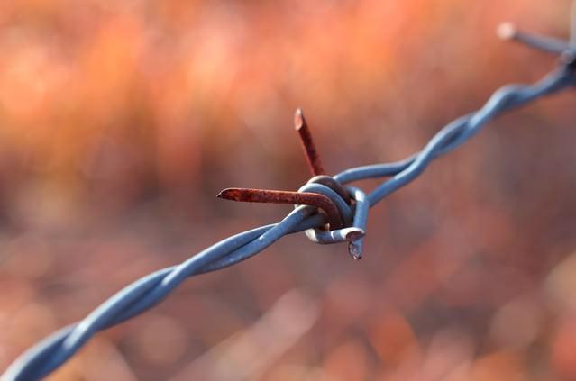 有刺鉄線の写真