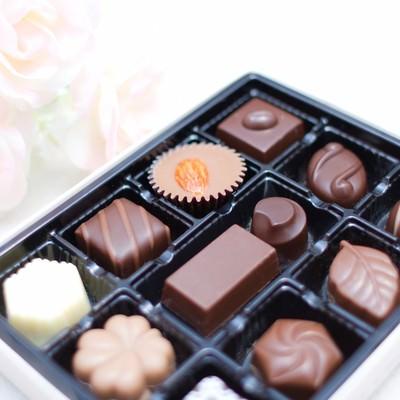 「白い薔薇とチョコレート」の写真素材