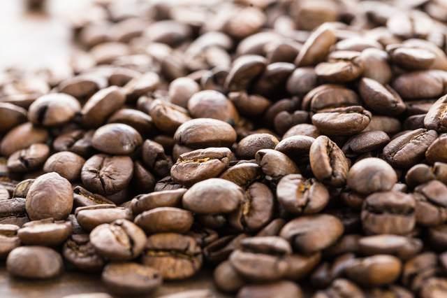 浅煎りの珈琲豆の写真