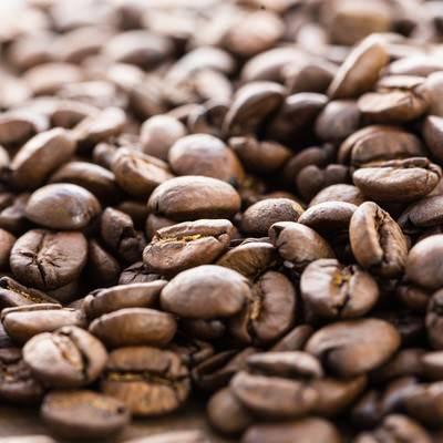 「浅煎りの珈琲豆」の写真素材