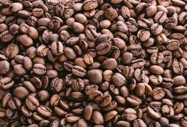敷き詰めたコーヒー豆の写真