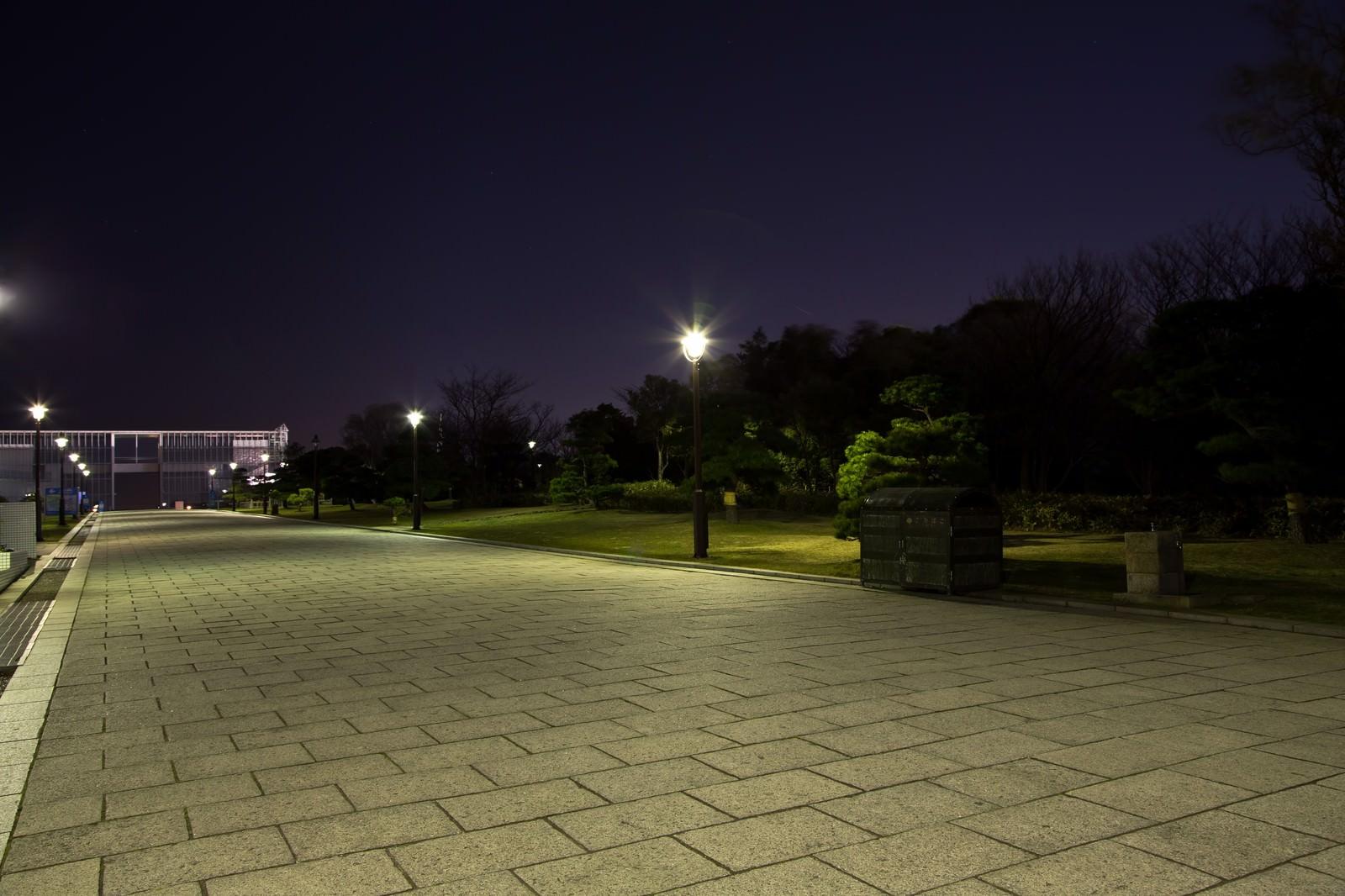 「夜の葛西臨海公園の展望広場まで」の写真