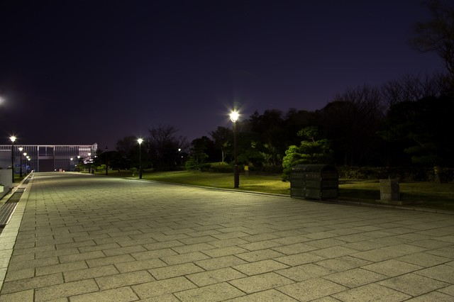 夜の葛西臨海公園の展望広場までの写真