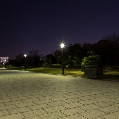 「夜の葛西臨海公園の展望広場まで」の写真素材
