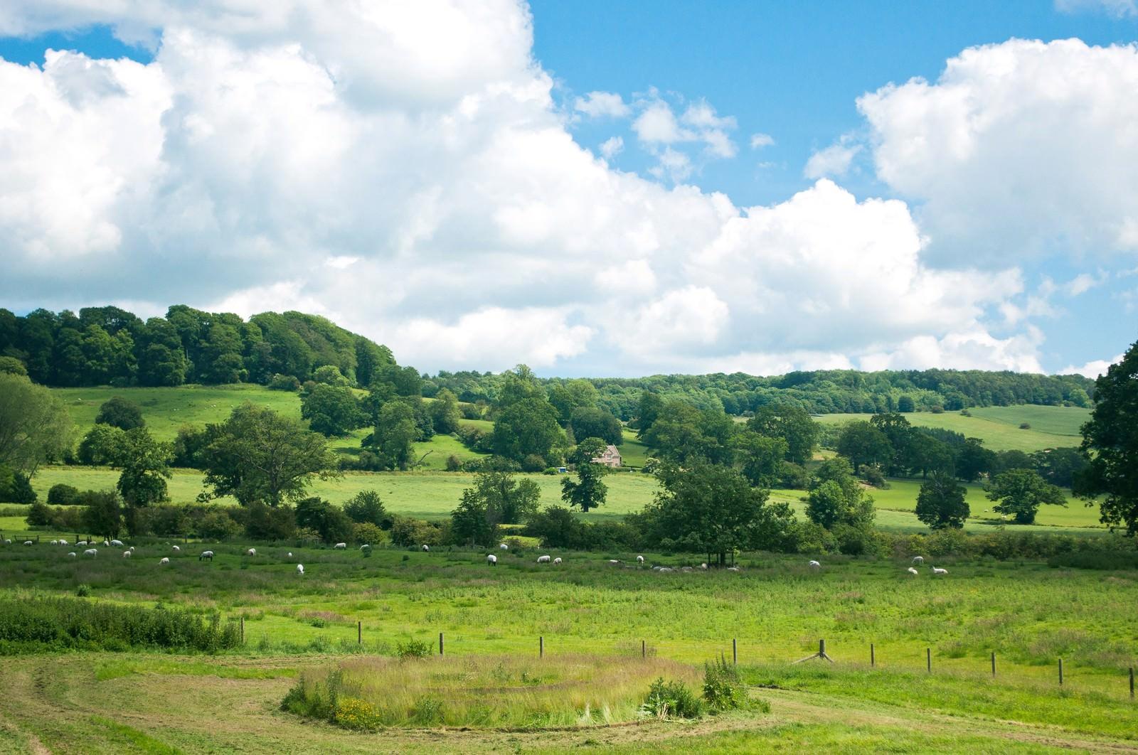 「スードリー城にある牧場」の写真