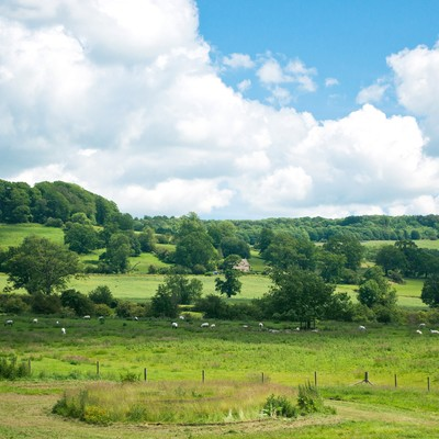 「スードリー城にある牧場」の写真素材