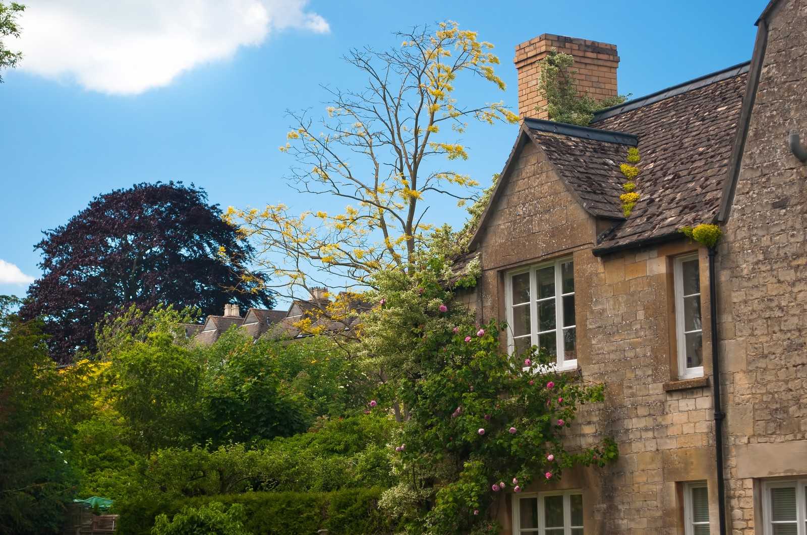 「ウィンチクームのレンガの家」の写真