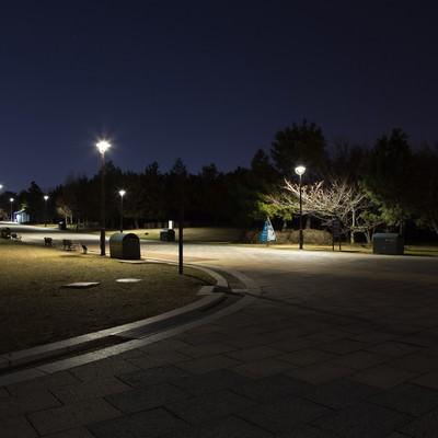 「深夜の葛西臨海公園」の写真素材