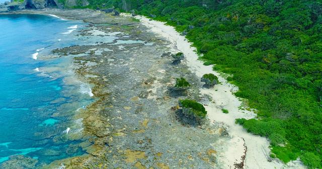 犬の門蓋の奇岩と徳之島の青い海(空撮)の写真