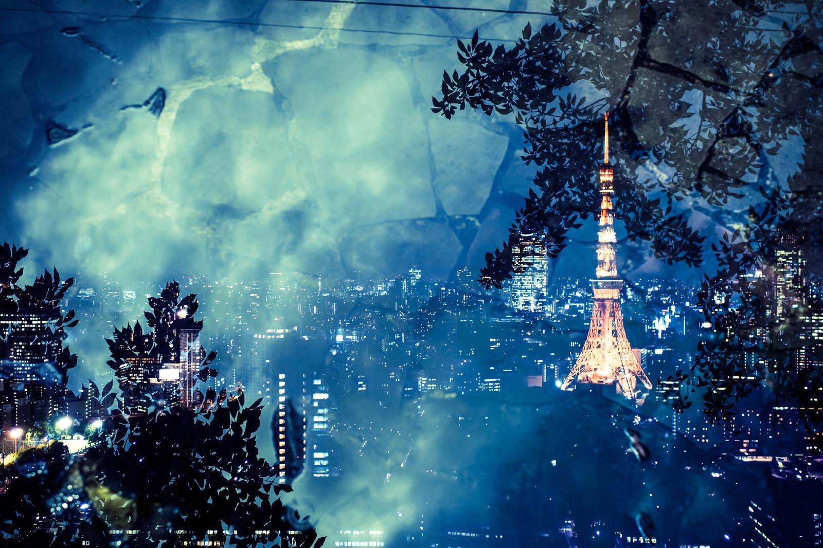 「石畳と東京タワー(夜景)石畳と東京タワー(夜景)」のフリー写真素材を拡大