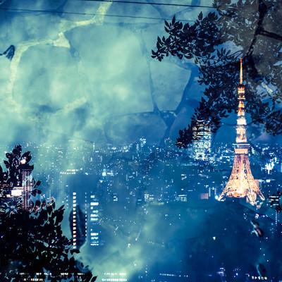 「石畳と東京タワー(夜景)」の写真素材