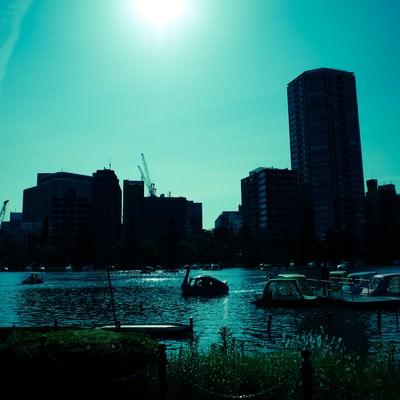 「日差しとスワンボート」の写真素材
