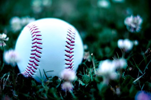 外野に転がった硬球の写真