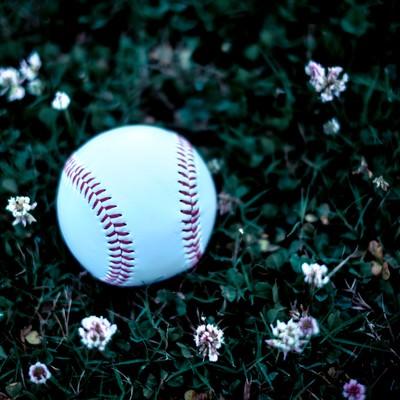 「足元に転がる野球のボール」の写真素材