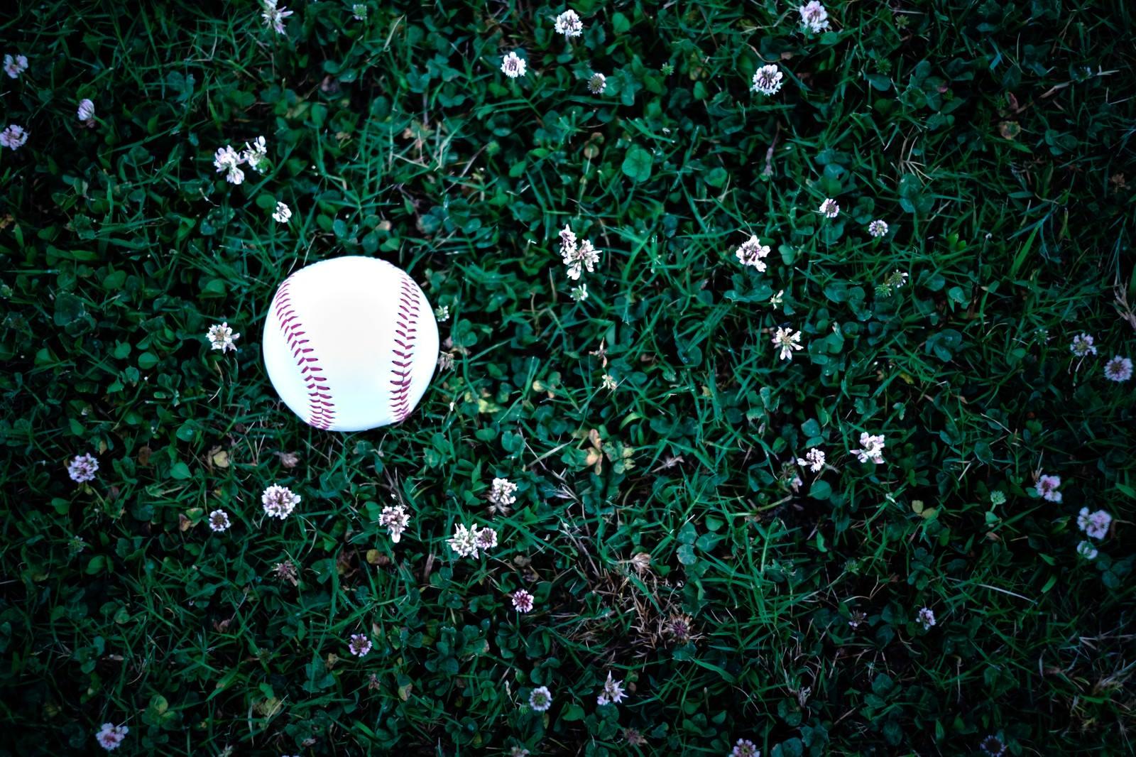 「野原に転が野球のボール」の写真