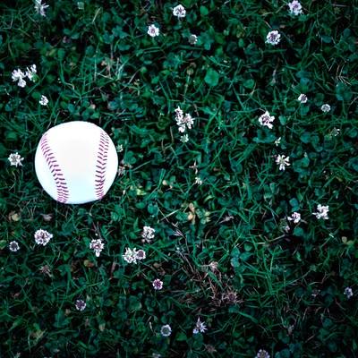 野原に転が野球のボールの写真