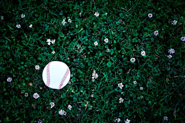 片付け忘れた野球のボールの写真