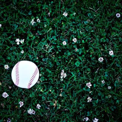 「片付け忘れた野球のボール」の写真素材