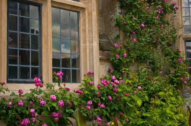 スードリー城の古風な窓の写真