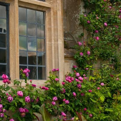 「スードリー城の古風な窓」の写真素材