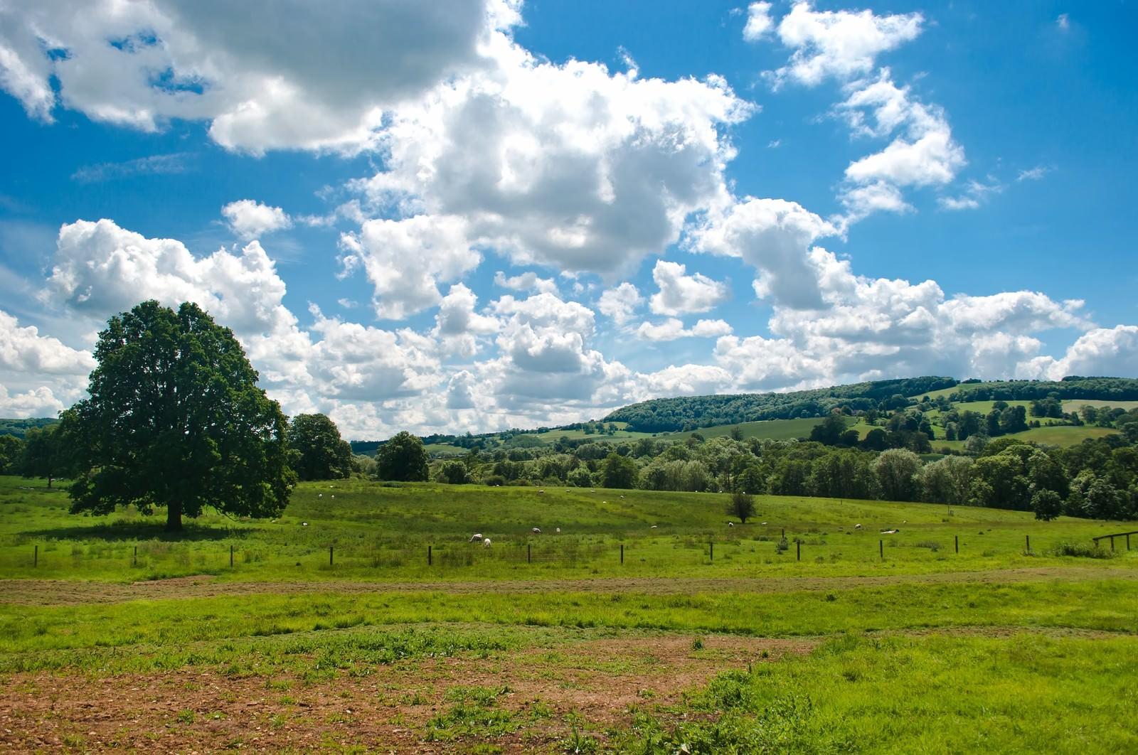 「スードリー城の牧場と青い空」の写真