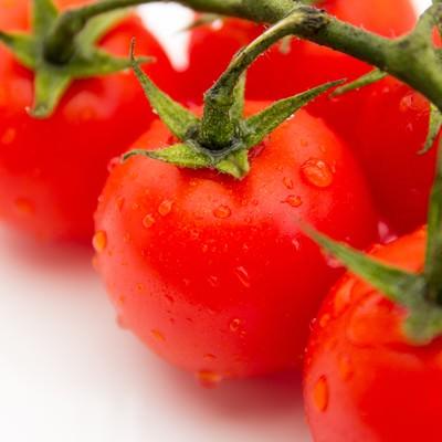 「水滴がついたフレッシュミニトマト」の写真素材