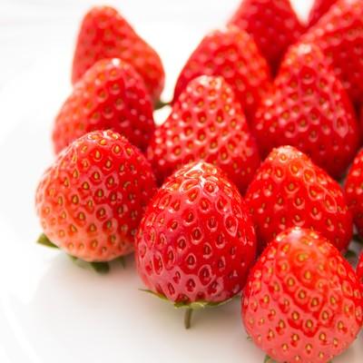 「フレッシュな苺」の写真素材