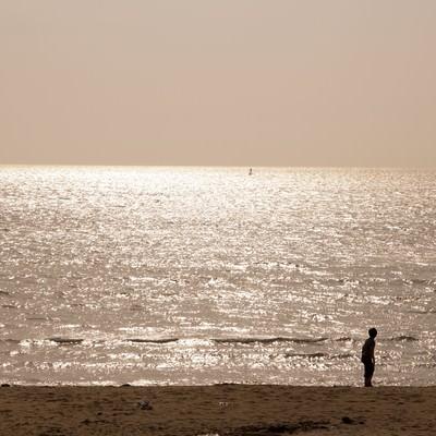 夕焼けの海岸の写真