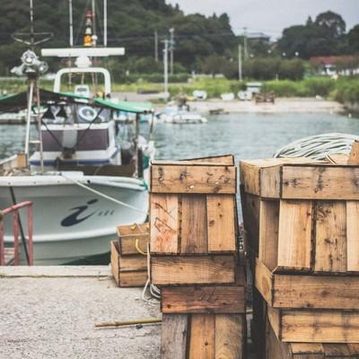 漁港の風景の写真