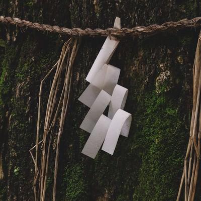 「ご神木」の写真素材