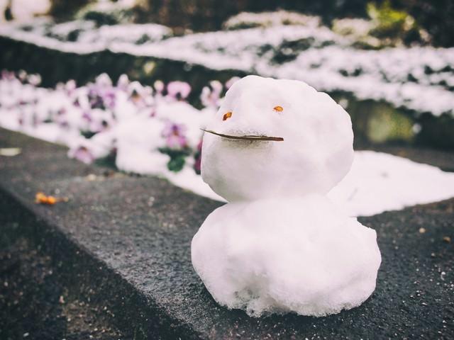 ちょっとだけ積もった雪で作った小さな雪だるまの写真