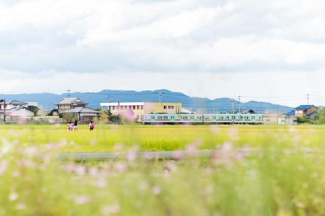 西鉄電車と田園風景(福岡県大刀洗町)の写真