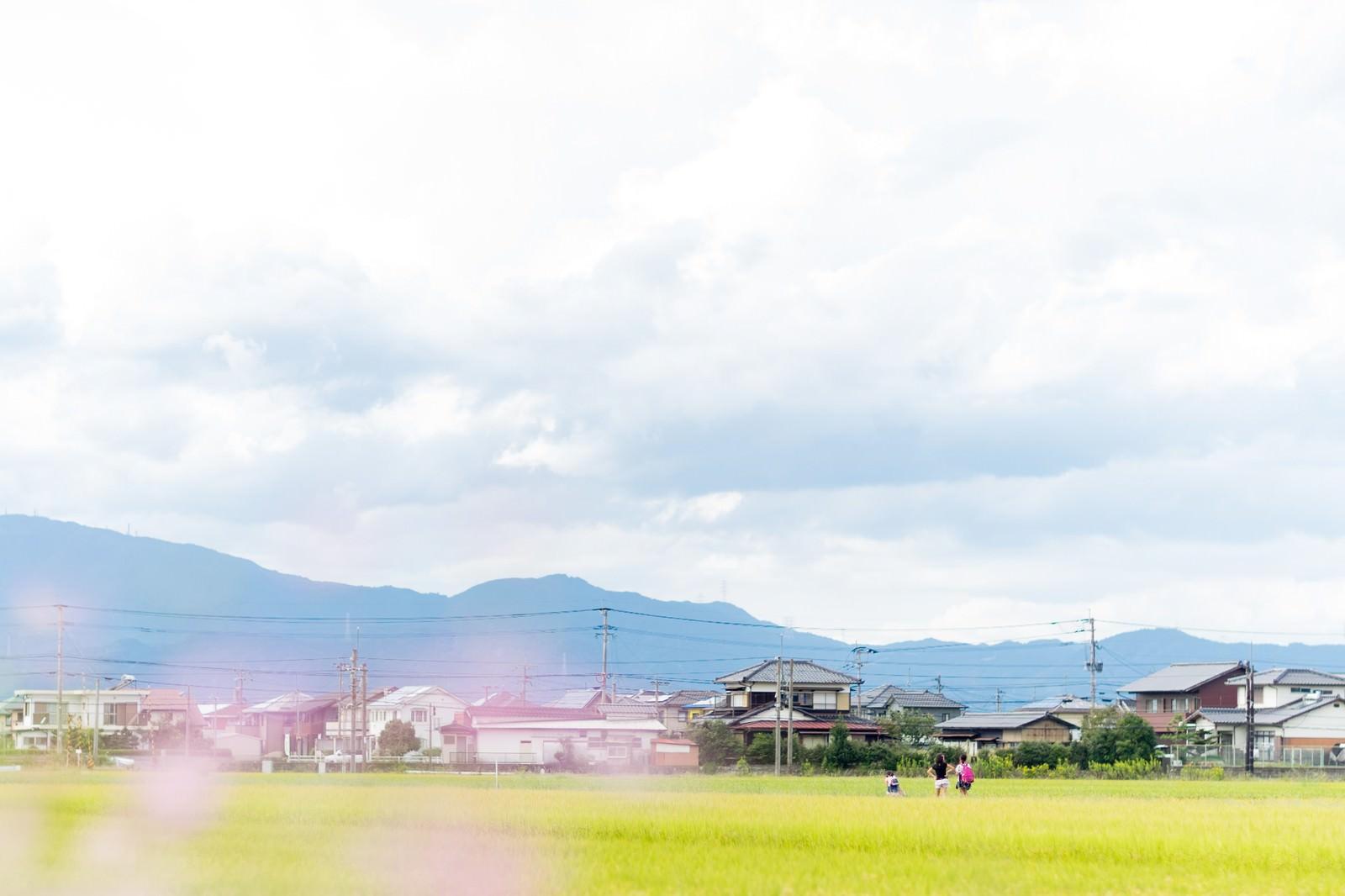 「田んぼ道を下校する小学生の姿」の写真