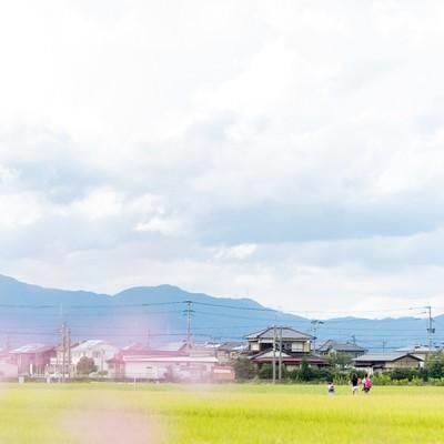 「田んぼ道を下校する小学生の姿」の写真素材