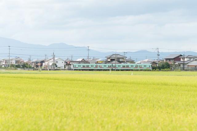 大刀洗町の田園の中を走る西鉄電車の写真