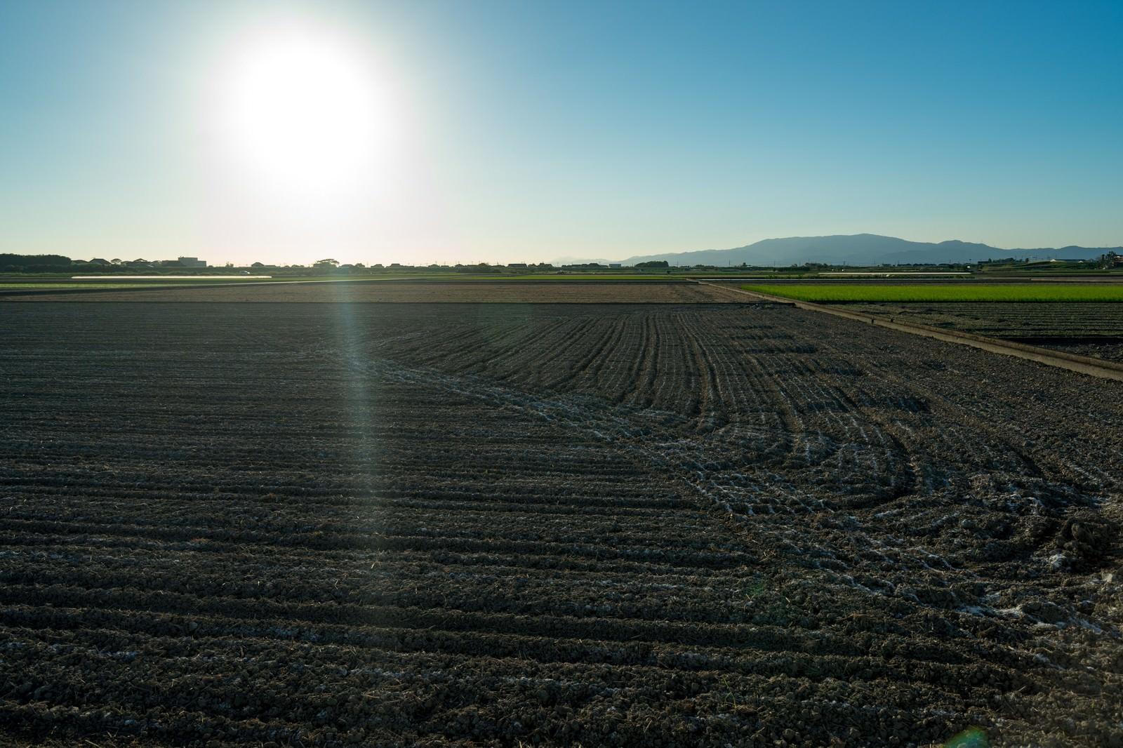 「大刀洗町の朝が始まる(農地)」の写真