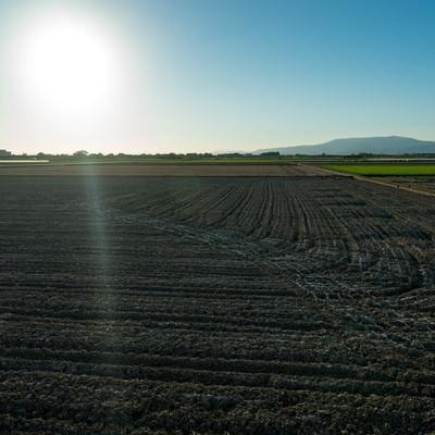 「大刀洗町の朝が始まる(農地)」の写真素材