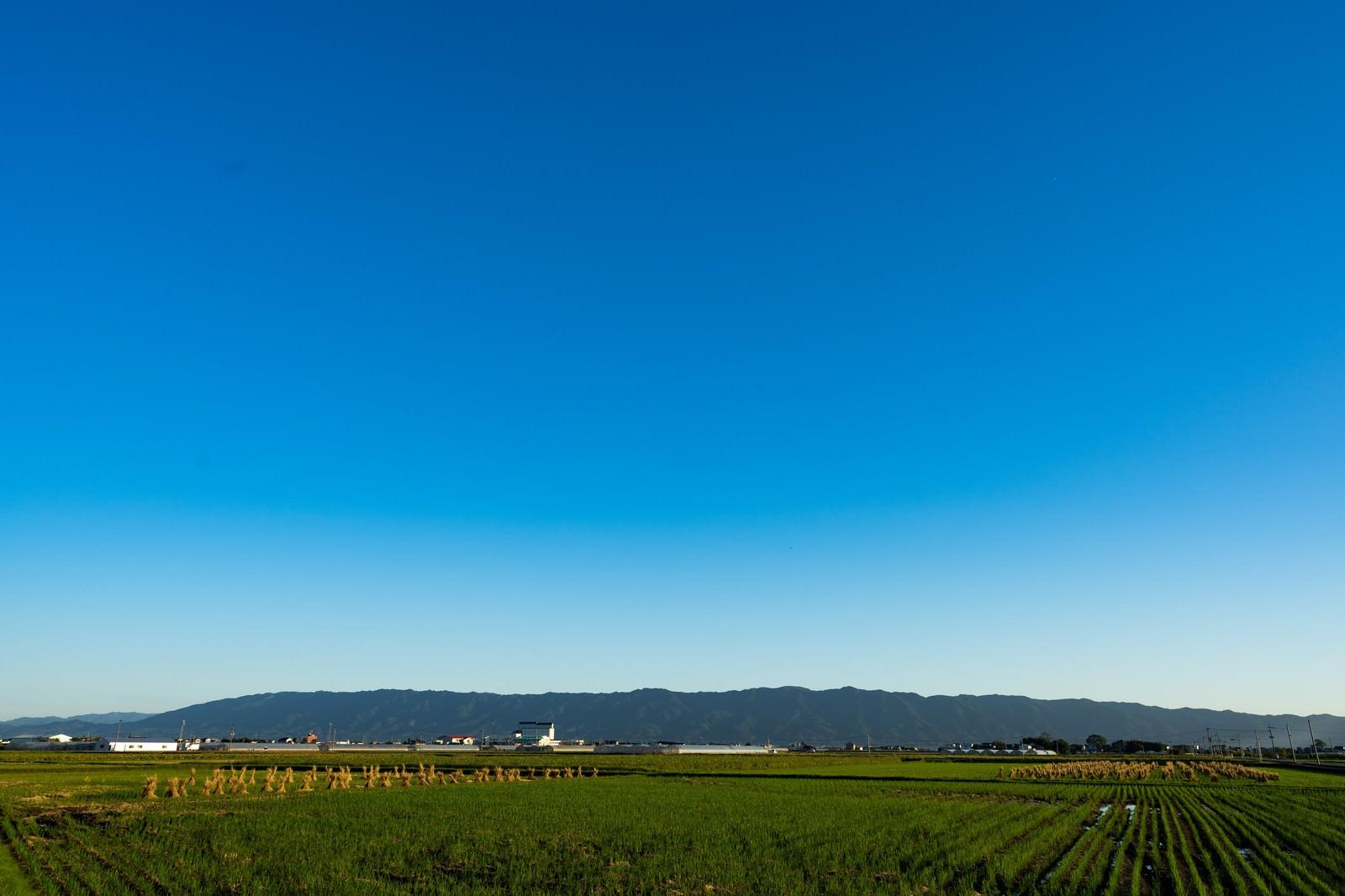 「澄んだ青空と大刀洗の農地筑後平野」の写真