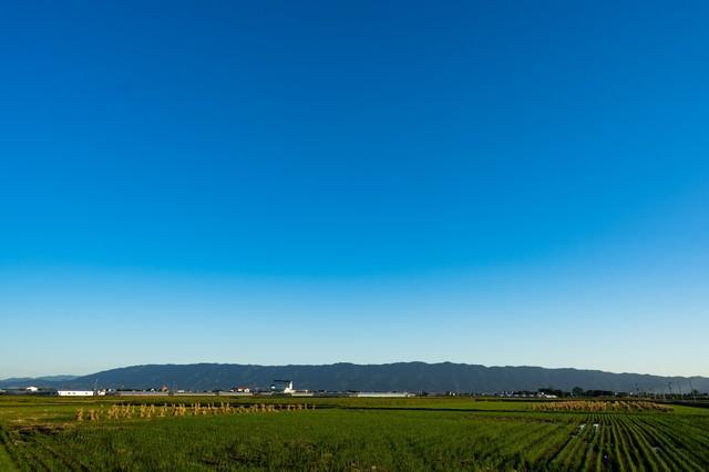 澄んだ青空と大刀洗の農地筑後平野の写真