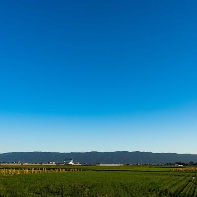 「澄んだ青空と大刀洗の農地筑後平野」の写真素材